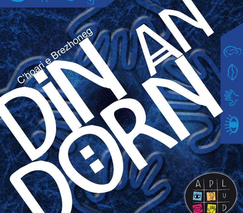 jeu de société en langue bretonne Din an dorn Aplud